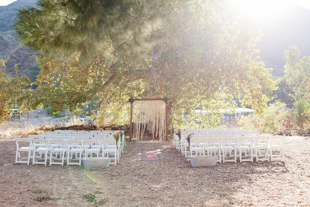 reptacular ranch wedding