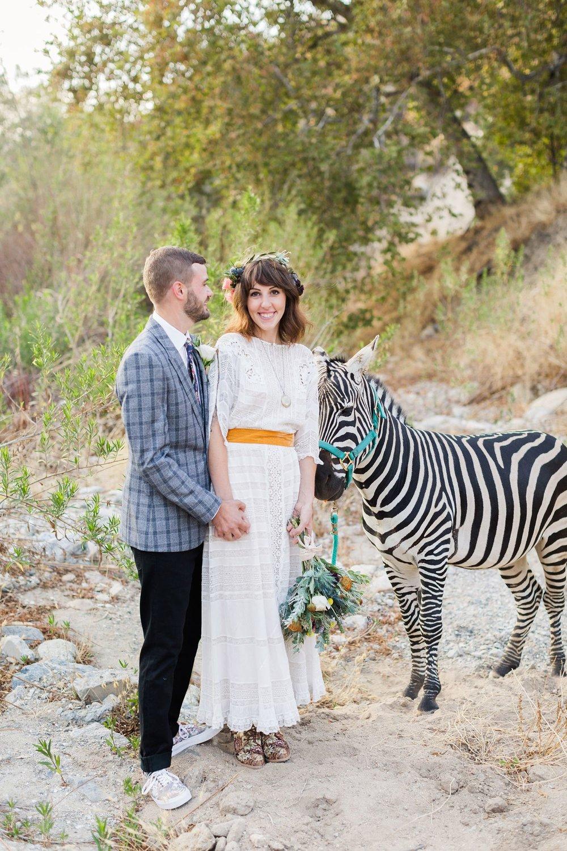 reptacular ranch wedding photography zebra