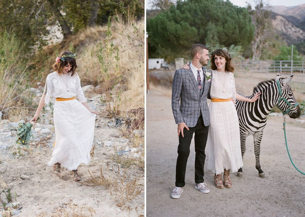 wedding photography with zebra