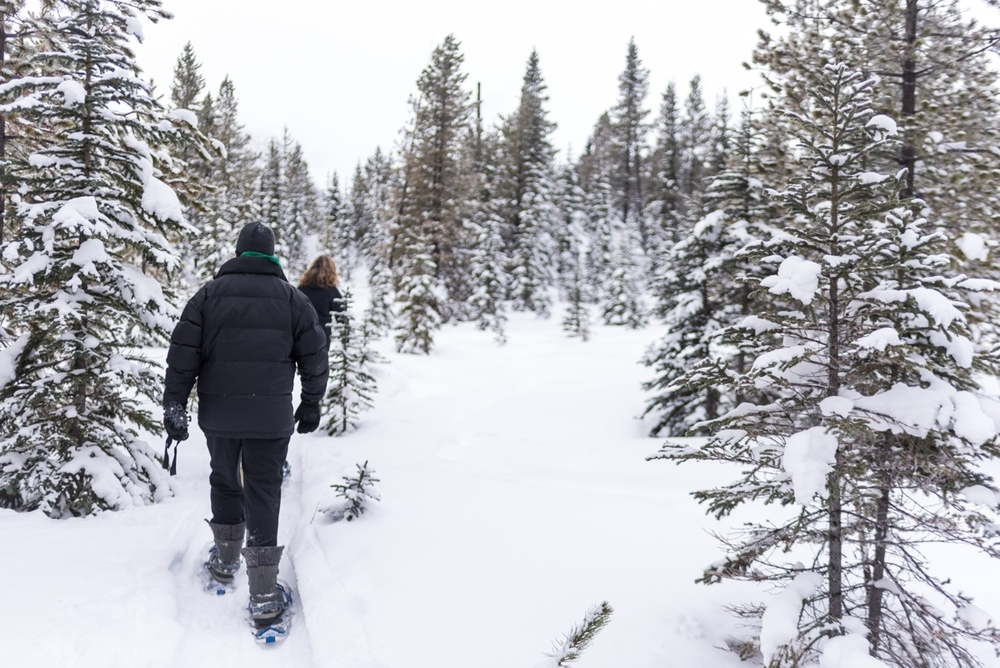 160116-121047-Snowshoeing-c1-9027.jpg