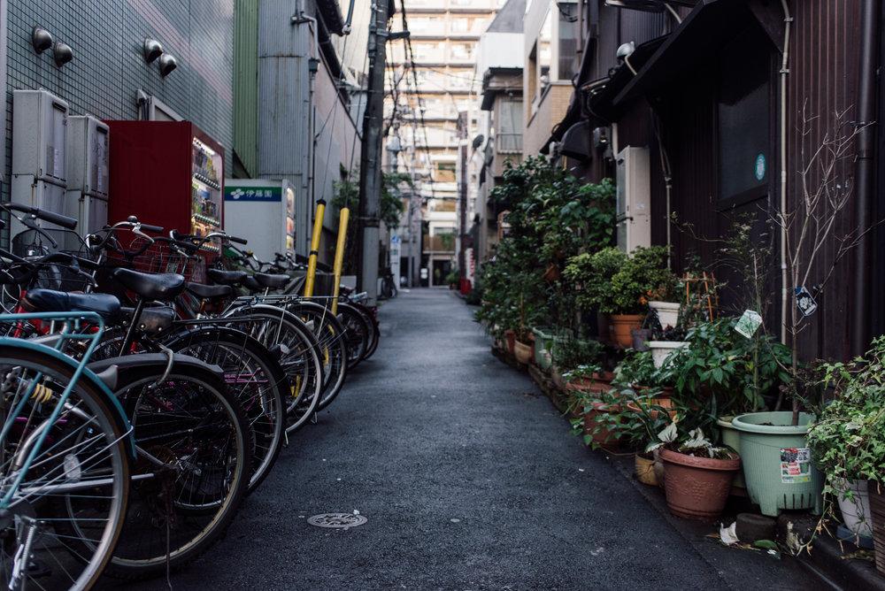161111-Japan-5003207-145242-9328.jpg