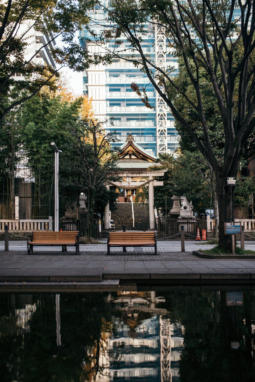 161113-Japan-5003207-071640-9510.jpg