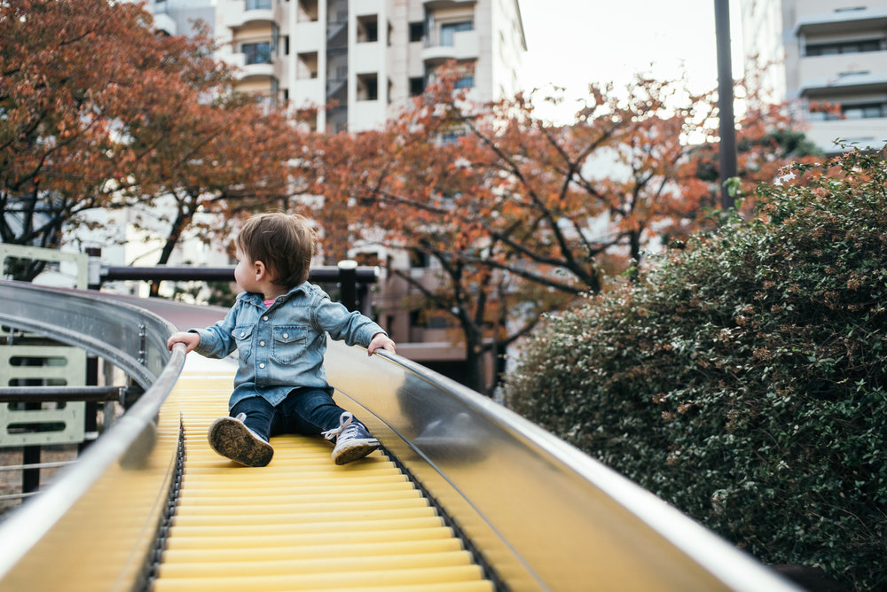 161113-Japan-5003207-073812-9537.jpg