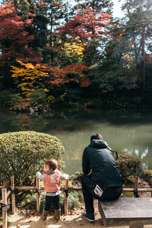 161116-Japan-5003207-102325-9947.jpg