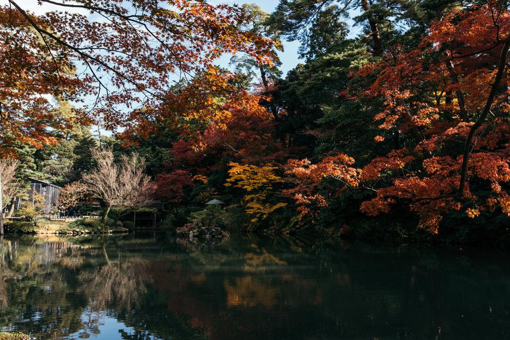 161116-Japan-5003207-101957-9937.jpg