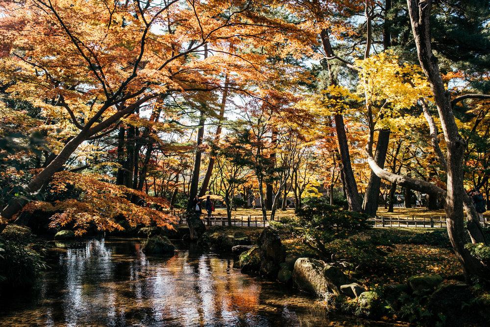 161116-Japan-5003207-112001-0046.jpg