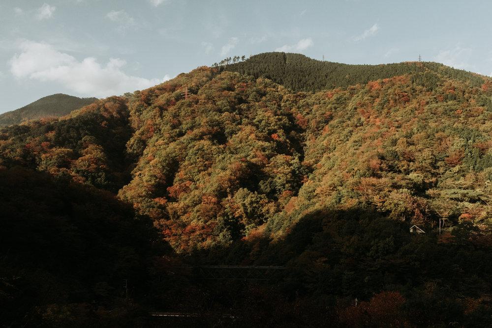 161118-Japan-5003207-143337-0137.jpg