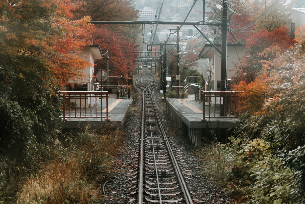 161119-Japan-5003207-102808-0312.jpg