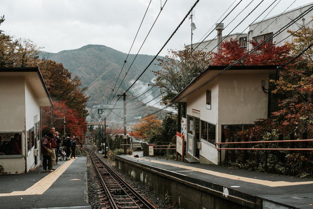 161119-102343-NihonisJapan-a2-8568.jpg