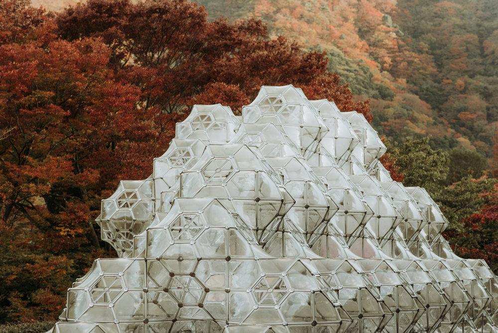 161118-Japan-5003207-152217-0169.jpg