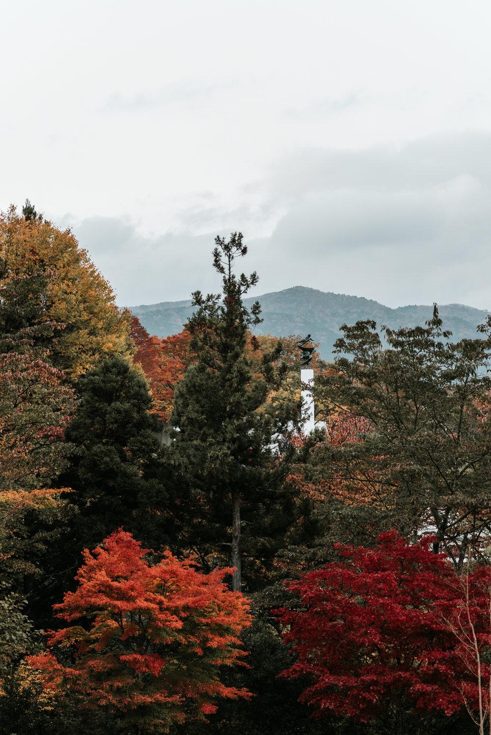161118-Japan-5003207-162236-0268.jpg