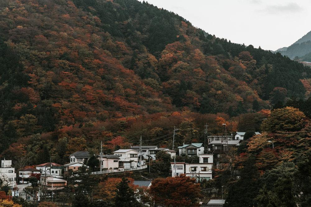 161118-Japan-5003207-163443-0276.jpg