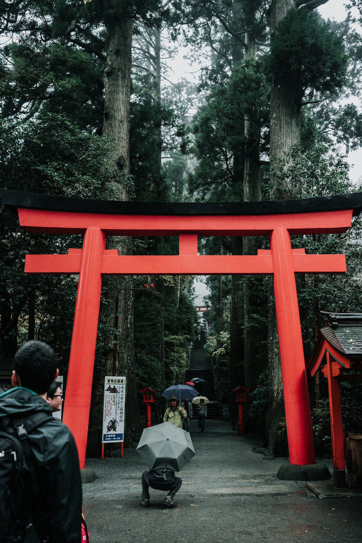 161119-Japan-5003207-135424-0430.jpg
