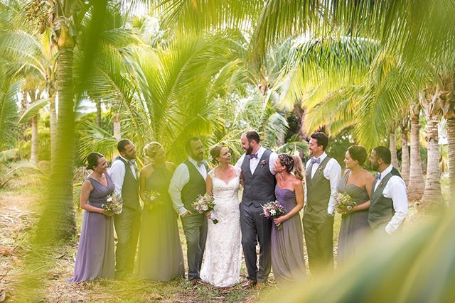 Loved all the green while photographing this wedding at a coconut farm in Maui. . . . #wedding #weddingphotographer #destinationweddingphotographer #destinationwedding #mauiwedding #adventurebride #adventurebrides #bride #bridalinspiration #coloradoweddingphotographer #coloradowedding #coconutfarm #green #color