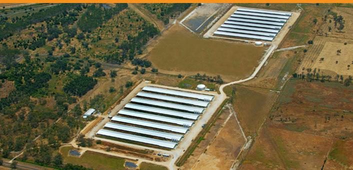 pro ten chicken farms solar power system.jpg