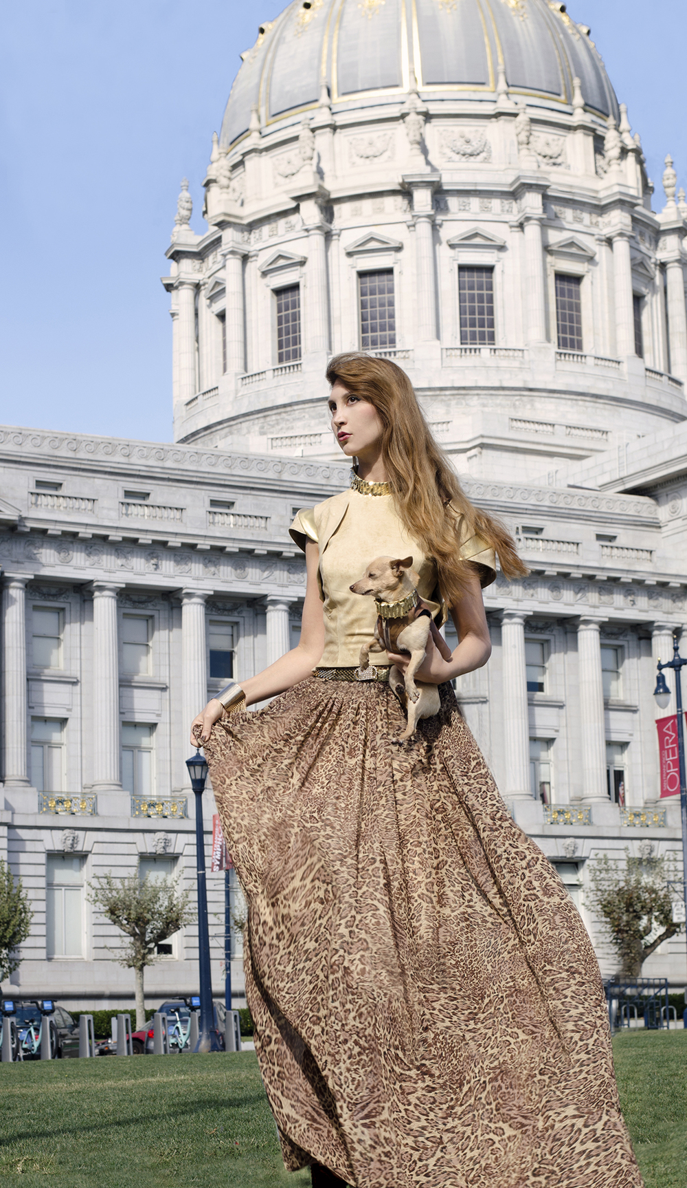 Gilded Age Fashion project, 2015