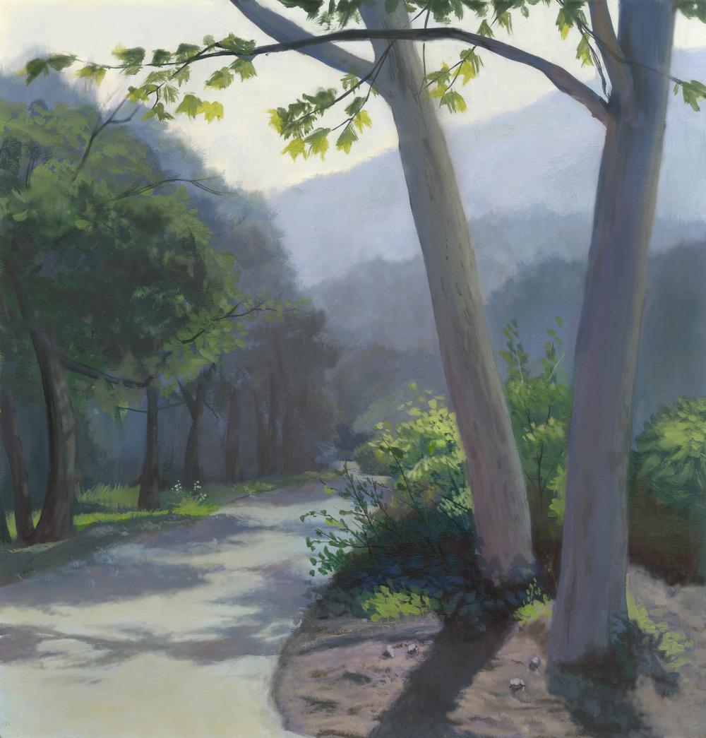 landscape_final3.jpg