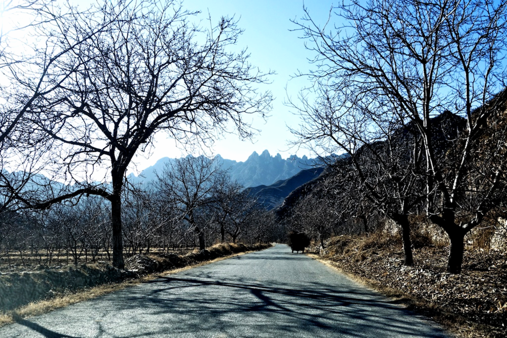 The county road between Zhenbiancheng and Hengling