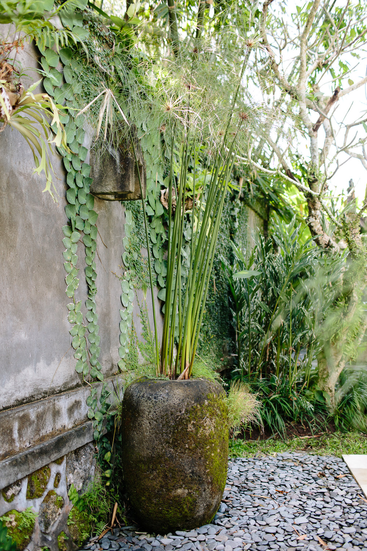 Bali-Kalapa-2016-4989.jpg