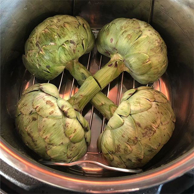 🇳🇵House of Artichoke🇳🇵 Dinner is coming...