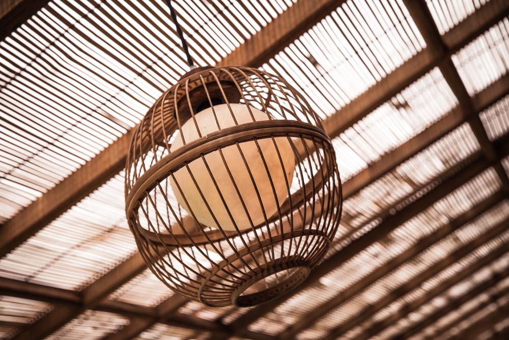 BIRD LAMP.jpg