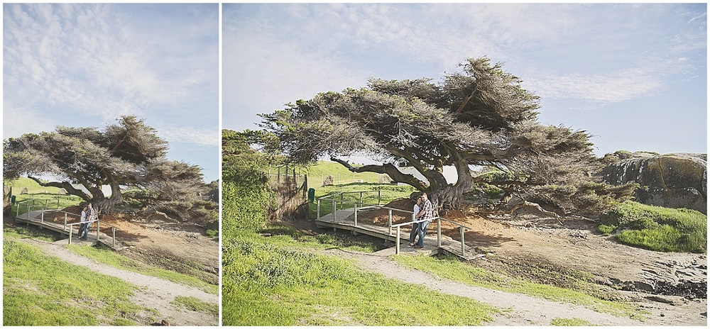 Cape Town engagement photographer (47).jpg