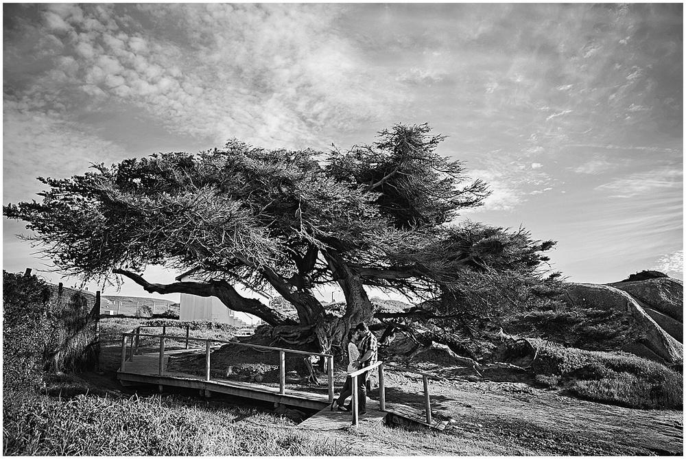 Cape Town engagement photographer (48).jpg