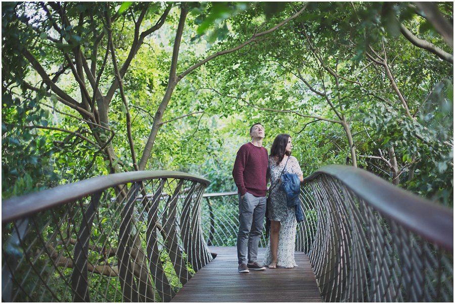 Kirstenbosch engagement photographer (36).jpg