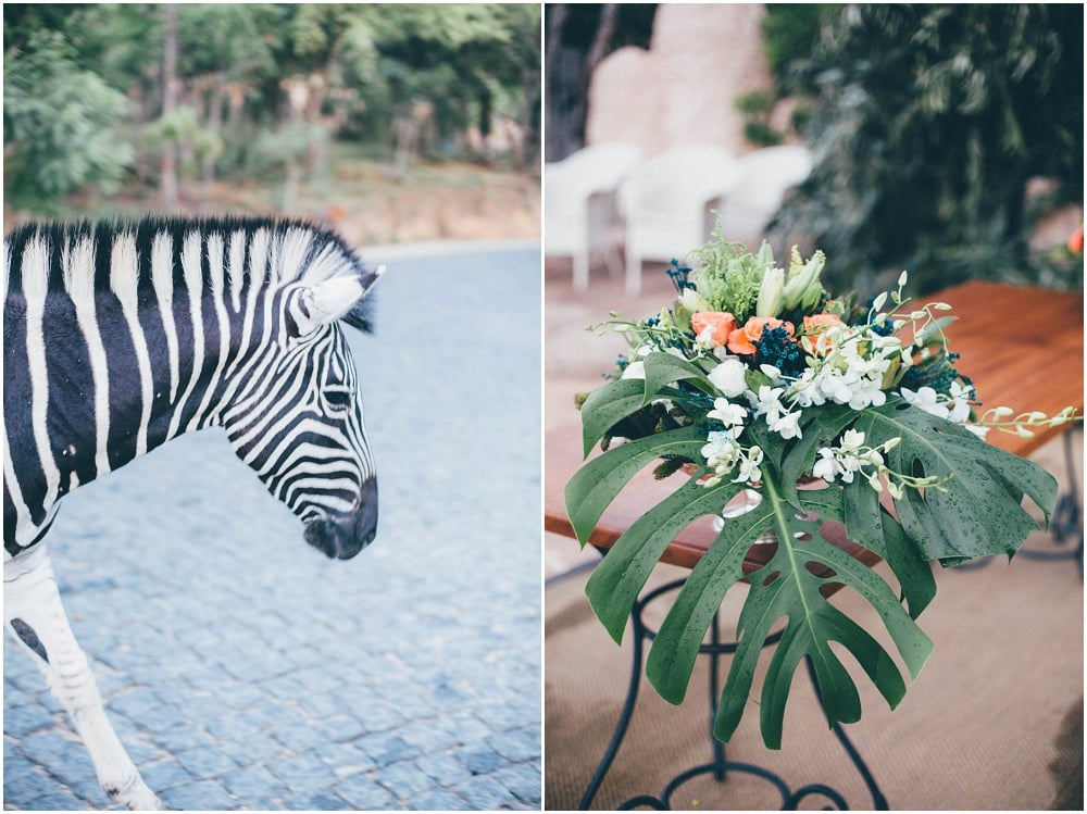 Ronel Kruger Cape Town Wedding and Lifestyle Photographer_2563.jpg