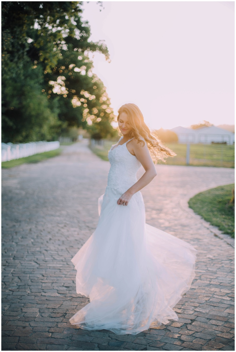 Ronel Kruger Cape Town Wedding and Lifestyle Photographer_8853.jpg