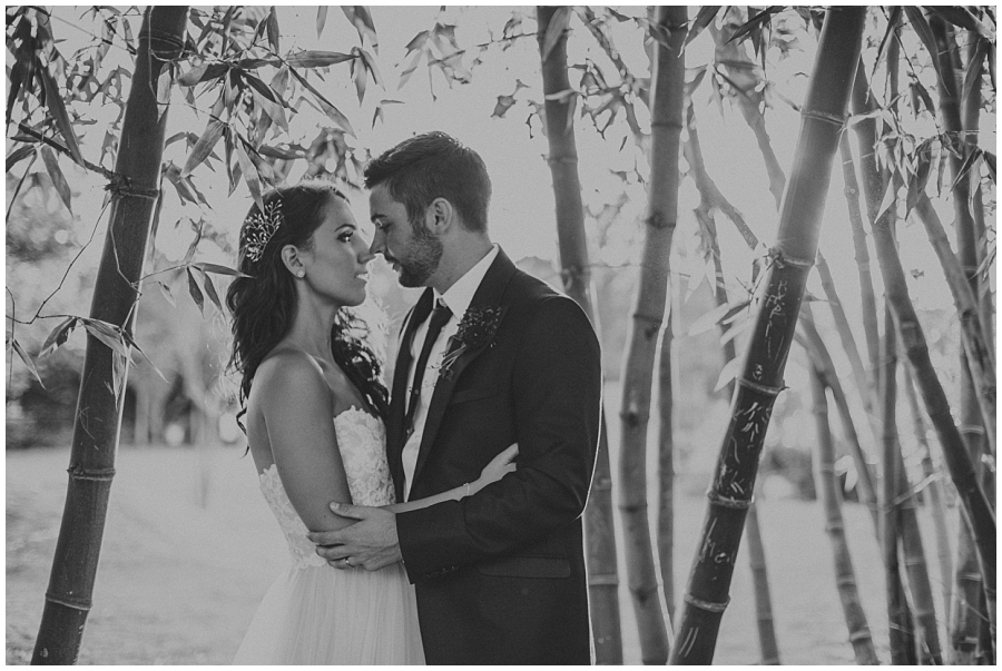 Ronel Kruger Cape Town Wedding and Lifestyle Photographer_6611.jpg