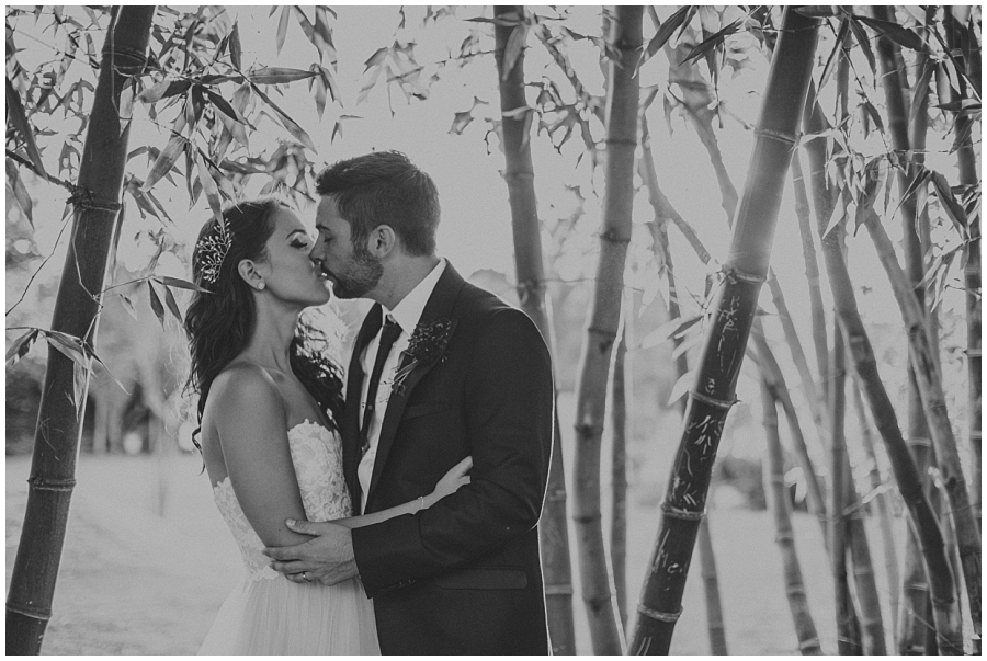 Ronel Kruger Cape Town Wedding and Lifestyle Photographer_6612.jpg