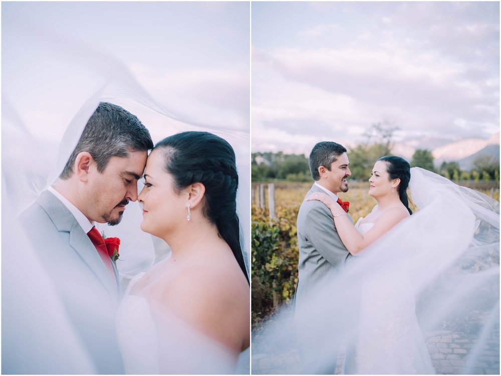Ronel Kruger Cape Town Wedding and Lifestyle Photographer_2645.jpg