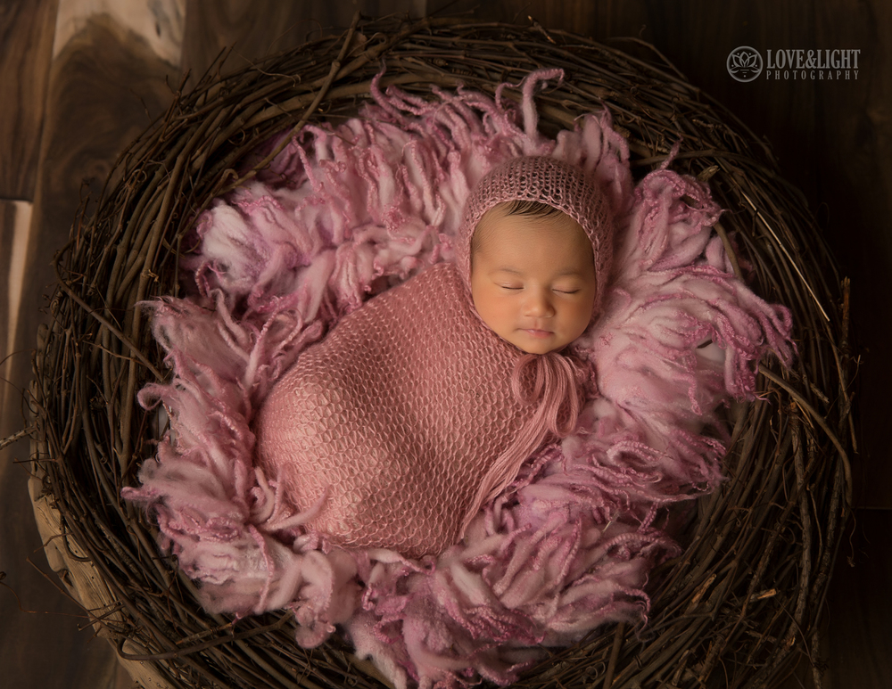 Newborn photographer lake norman