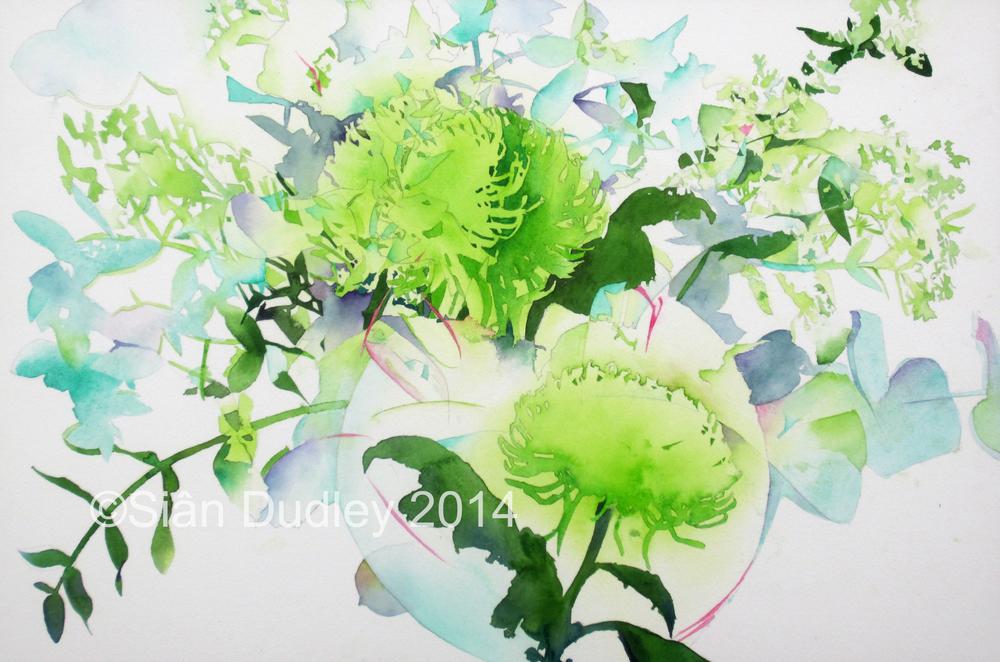 CGreen Chrysanthemums.jpg