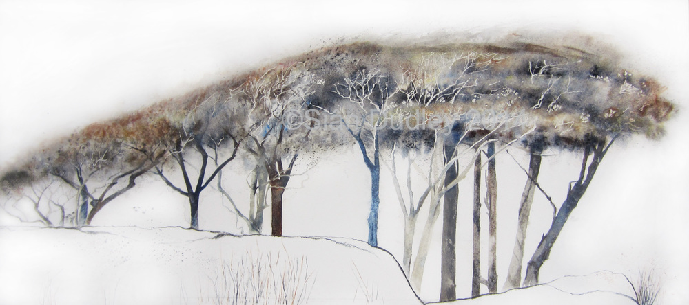 Loddiswell Trees Watercolour I 20 x 30 I SOLD