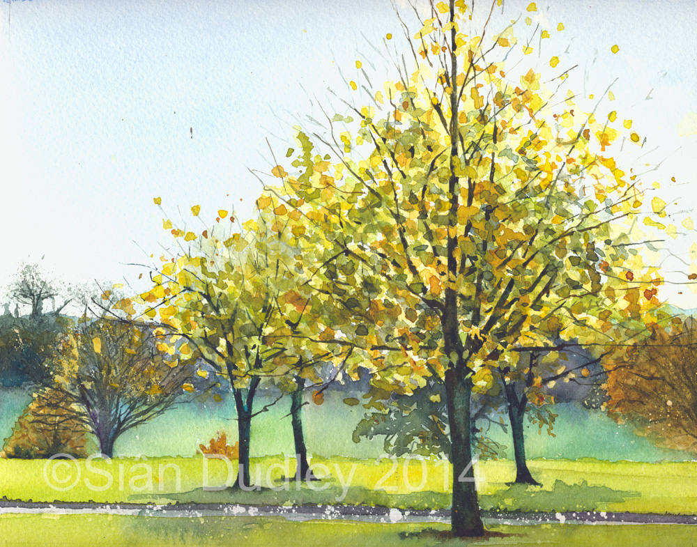 "Autumn at Saltram House   Watercolour  I  10"" x 8""  I  £175  BUY"