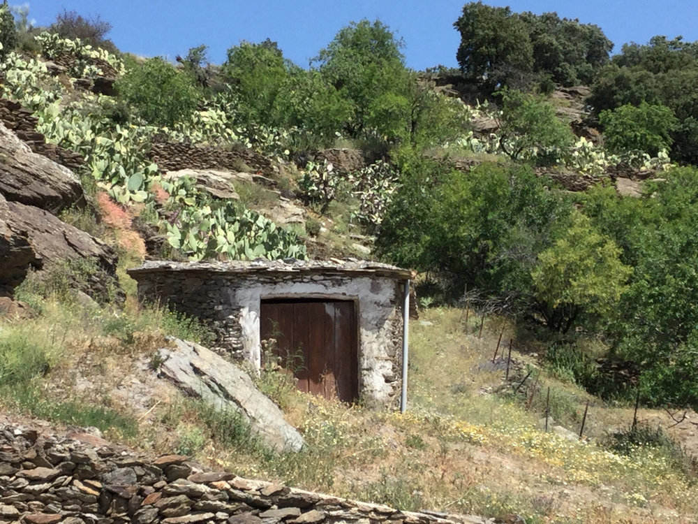 Shepherd's Hut, Mairena , Spain