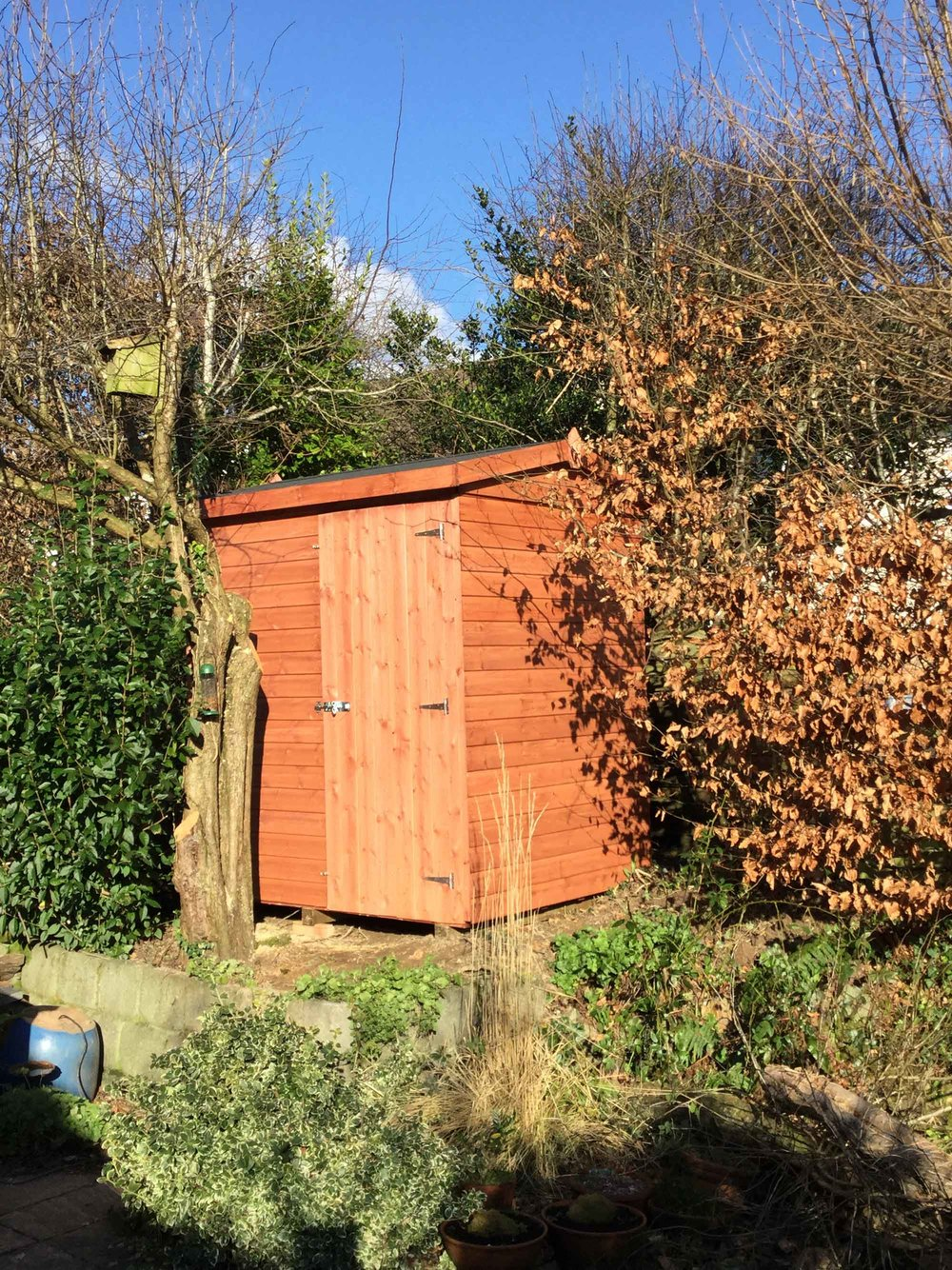 The Shed-in-the-Hedge