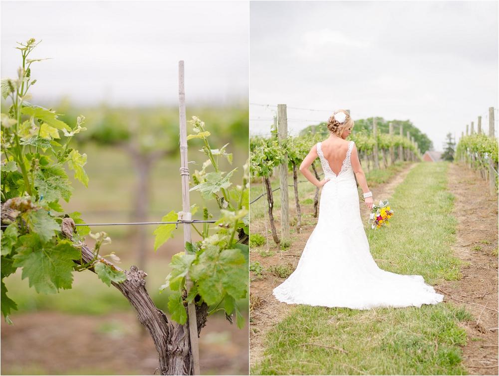Virginia_Vineyard_Wedding-25