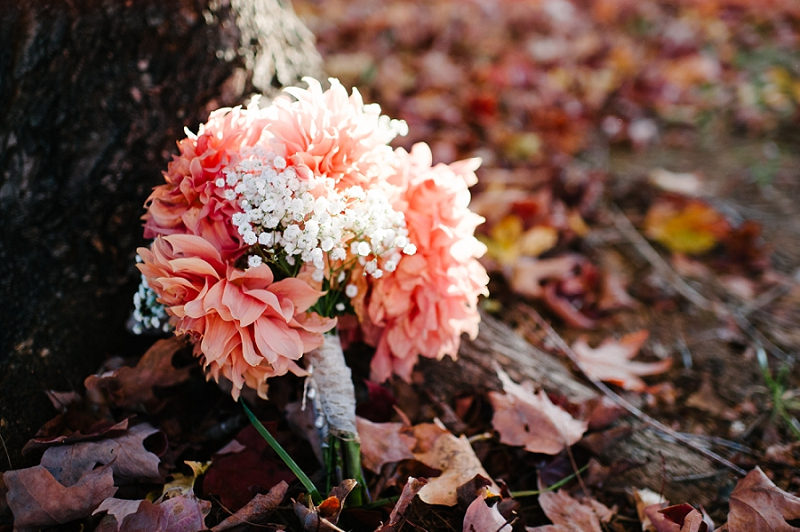 Colorful Fall Wedding, Lynchburg VA Wedding Photographer_0006
