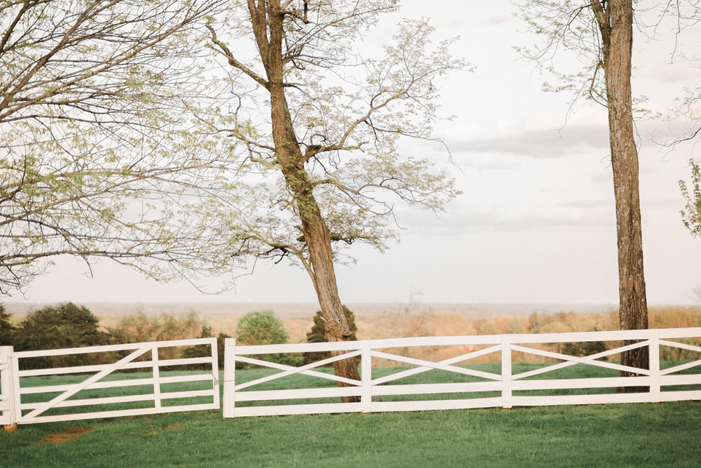 virginia_wedding_photographer_charlottesville_engagemnet_ashlawn_highland_0030.jpg
