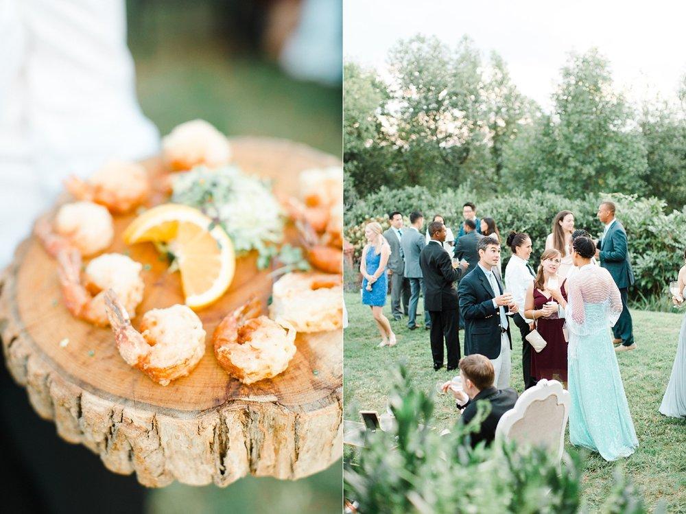 charlottesville_clifton_inn_wedding-129.jpg