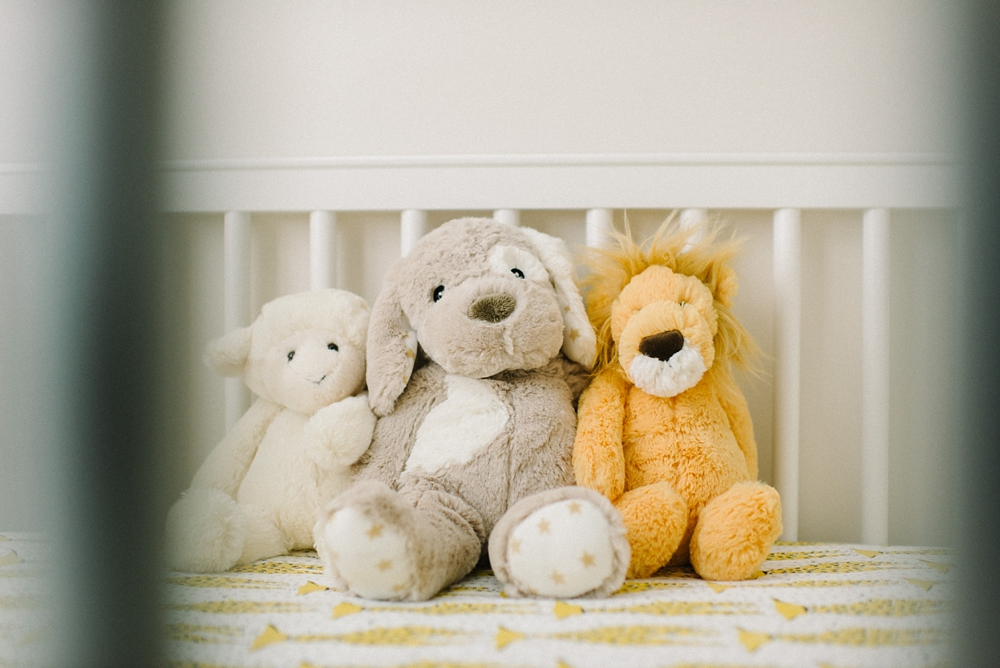 richmond_newborn_lifestyle_photography_fine_art_film_0004.jpg