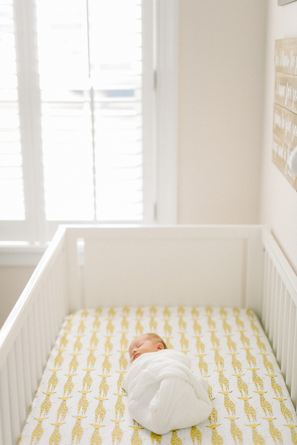 richmond_newborn_lifestyle_photography_fine_art_film_0005.jpg