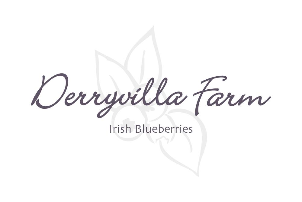Derryvilla-brand-logo.jpg