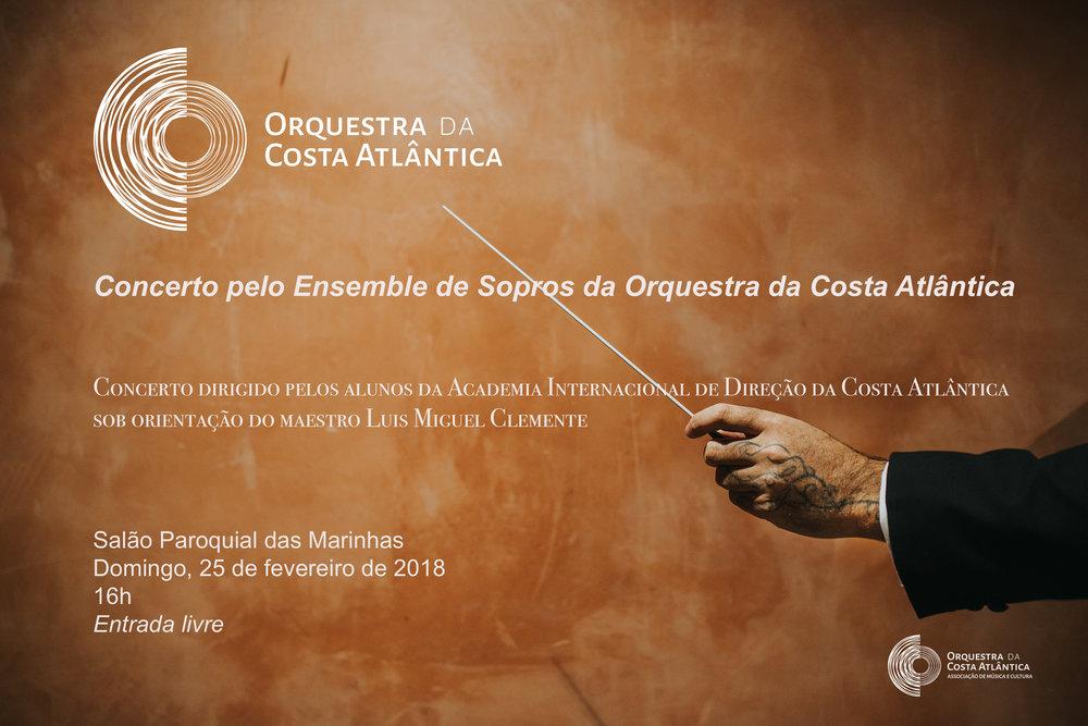 Cartaz Concerto Academia.jpg