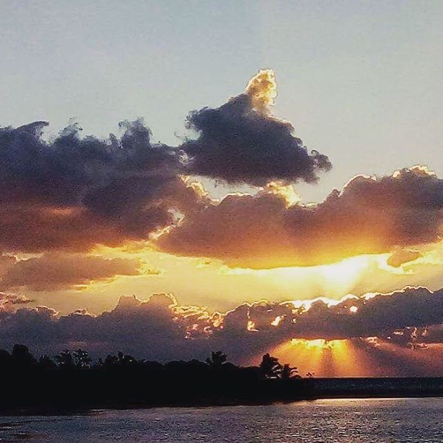 Everyday a new beginning at the paradise | #tulum #beachday #dawn #tulumbeach #welcome #goodmorning #sunlight #sunshine #tulumlife #casabananatulum #landscape