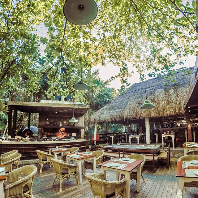 Daily our house opens its doors at 6:30 am to eat a full #breackfast in the magic jungles of #tulum  #tulumfood #tulumrestaurante #inthejungle #foodie #foodgasm #wheretoeatintulum #romanticatmosphere #private #yummy #caribbeanlife #caribbeanstyle #tropicalparadise #livemexico #quintanaroo #riveramaya #travel #tulumbeach #relax #visittulum