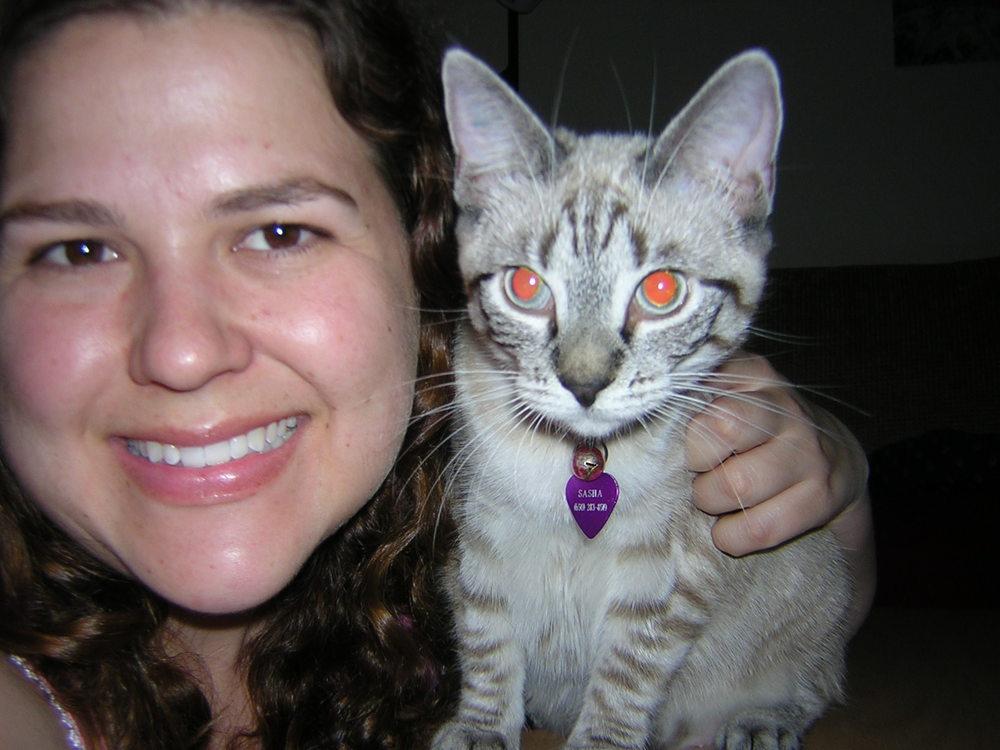9 cat 5028863.jpeg